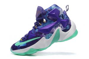 Nike Lebron XIII 420724-606
