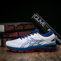 Asics GEL-KAYANO 25 1011A019-100