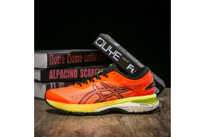Asics GEL-KAYANO 25 1011A019-800